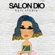 รูปภาพโลโก้ ของ SALON DIO