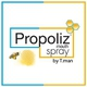 รูปภาพโลโก้ ของ Propoliz