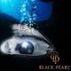 รูปภาพโลโก้ ของ Black Pearl